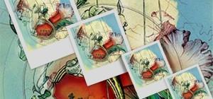 Malices-et-merveilles-2014-640x300